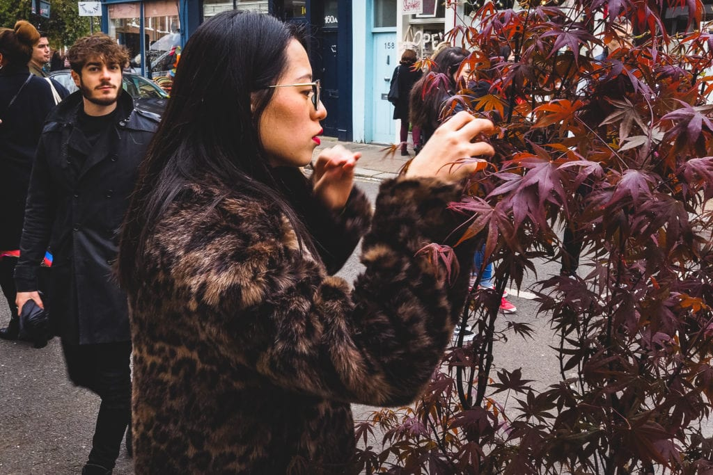 a girl looks through a plant at columbia road flower market in London